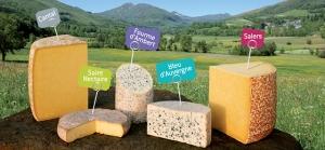 Fromages AOP AOC Auvergne