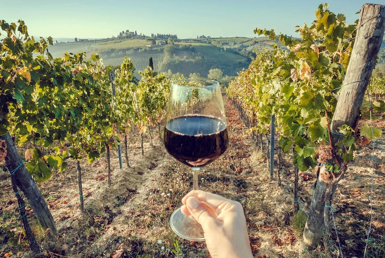 media-specialite-bourgueil-vinicole